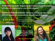 Invitación Seminario DIGV- 9 de julio de 2020